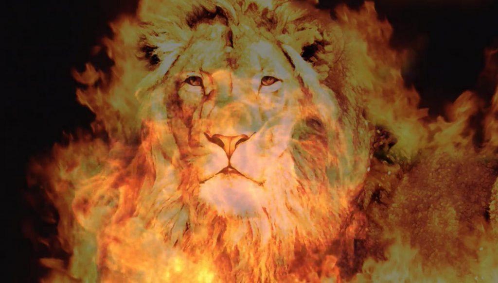 lionfireface